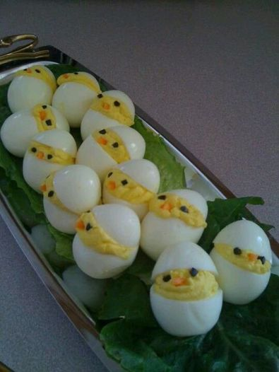 Söta äggkycklingar