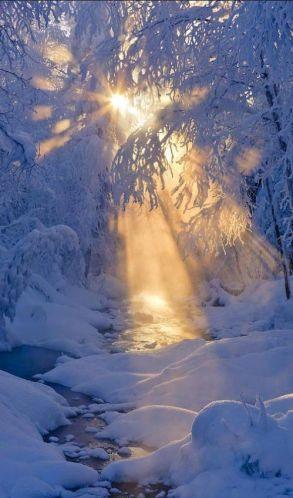 vinter-1