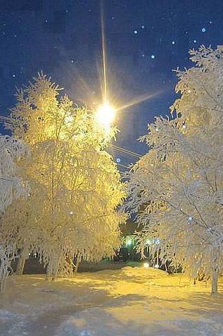 vinter-3